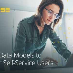 Datamodellen bouwen om selfservicegebruikers te ondersteunen