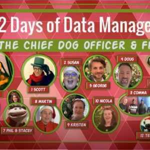 De 12 dagen van gegevensbeheer